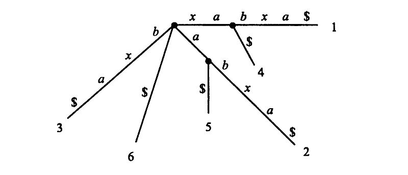 Файл:Suffix tree.jpg